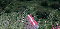 Die Wegmarkierungen auf Steinen, Blöcken und Bäumen bringen dich wieder sicher zurück. #bergevollerschätze #mountainsfulloftreasures #piesendorfniedernsill Hiking, Summer