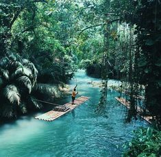 Jamaica green jungles + turquoise blue waters || Raft cruises on the crystal-clear Blue Lagoon