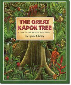 22 Best The Kapok Tree And Rainforest Images Rainforest Theme