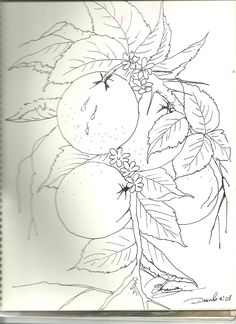One Stroke Painting, Tole Painting, Fabric Painting, Coloring Books, Coloring Pages, Fabric Paint Designs, Sketchbook Drawings, Creative Embroidery, Fruit Art