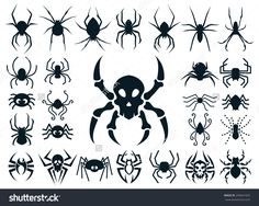 A Set Of Spider Shapes In Different Styles: Natural, Cute Cartoon, Spider Skull Design And Tribal Tattoo Style. Стоковая векторная иллюстрация 299641655 : Shutterstock