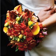 Bouquet ideas for October -   Amaranthus: orange, brown, gold   Chrysanthemum: gold, orange, white, red  Aster: white, purple  Fall leaves: Poplar, Sycamore, Oak, Elm, Maple.  These Ccolors aare nice accents