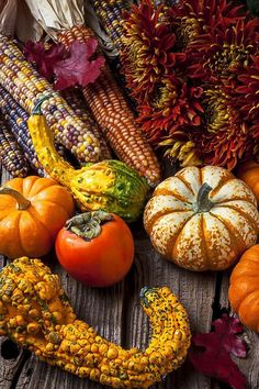 Funky gourds and Indian corn