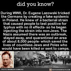 During WWII, Dr. Eugene Lazowski tricked the Germans by creating a fake epidemic in Poland. He knew of a bacterial strain that caused people to test positive for typhus with no ill effects- so he. Did You Know Facts, Things To Know, The More You Know, Good To Know, Wtf Fun Facts, Random Facts, Weird History Facts, Strange Facts, Real Facts
