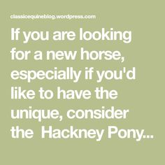 If you are looking for a new horse, especially if you'd like to have the unique, consider the Hackney Pony. This flashy, high-stepping pony has an intriguing history and makes a popular horse show competitor. History The Hackney originated from Norfolk, England. Norfolk Trotters, a popular breed of horse, were used in the region and…
