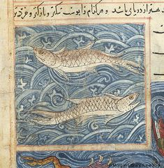 Bestiary, MS M.500 fol. 78v - Images from Medieval and Renaissance Manuscripts - The Morgan Library & Museum