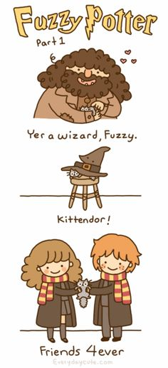 FUZZY POTTER.  Combining my love of cats and Harry Potter.  It's official.  I will die an old spinster cat lady.