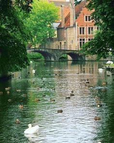"""257 curtidas, 2 comentários - Blog & Agência de Viagens 🌍 (@tgpviagensoficial) no Instagram: """"✖️✖️✖️Bruges, uma linda cidade medieval, que é cortada por canais e por isso recebe a fama de ser a…"""""""