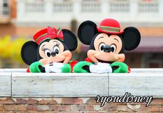 shun Disney Photo(@shun5462)さん | Twitter