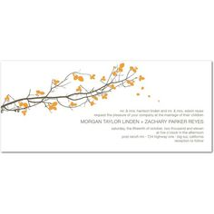 """- Great for """"Save the Date"""" - Signature White Textured Wedding Invitations Fall Branch ($0.10) found on Polyvore"""