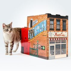 You should totally get a Brooklyn House For Your Cat