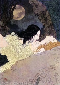 Vampire Fairy Demon by Takato Yamamoto. Interesting name, and beautiful picture. I want to learn how to draw this well...