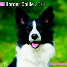 Border Collie 2014 Wall Calendar.  www.megacalendars.com/border-collie-calendar-by-pet-prints.html Dog Calendar, Calendar 2014, Border Collie, Corgi, Pets, Books, Animals, Amazon, Wall