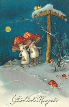 Mushrooms on a New Years Eve stroll