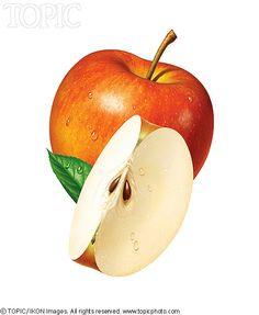 Food For Thought (Team) - Fotorealistische CGI-kunstenaars en ontwerpers Watercolor Fruit, Watercolor Flowers, Colorful Fruit, Polychromos, Color Pencil Art, Ap Art, Food Drawing, Fruit Art, Realistic Drawings