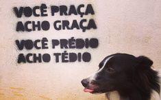 """""""Não muda a sociedade, mas ajuda"""", diz autor de frase que virou hit em São Paulo - São Paulo - iG"""