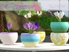 Crocuses flowers and pot by Helen - Sims 3 Downloads CC Caboodle