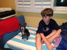 A Friend a Dog Would Want to Have Here is my nine-year-old son and a visiting Chihuahua who generally does not enjoy children.  Andrew was bent on making friends with her.  Given his past experienc...