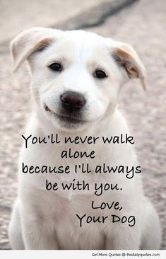 ... poetry pic picture photo image friendship famous quotations proverbs #DogQuotes