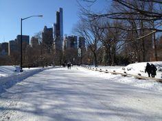 ny central park snow