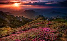 Гора Кюка, Румыния