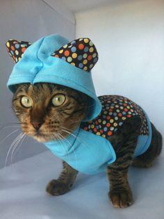 nice cat hoodie