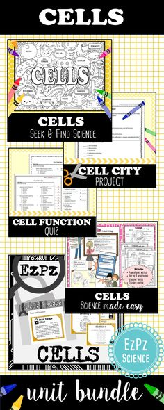 Email Excel Worksheet Excel Cell Structure And Function Worksheet Answers  Diagram  Free 4th Grade Multiplication Worksheets Word with 5th Grade Word Problem Worksheets Excel Cells Unit Bundle 11th Grade Math Worksheets