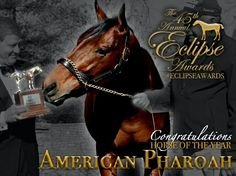 American Pharoah receiving his Horse Of The Year Eclipse Award