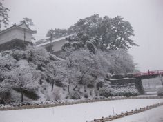 The Togiwagimon gate of Odawara Castle