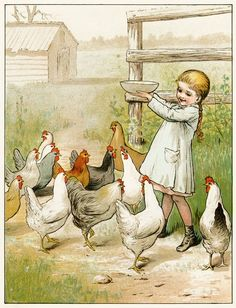 Vintage children's book illustration of a young girl feeding chickens.