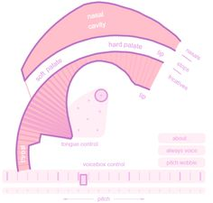 This Web simulator is doubly interesting. One, it demonstrates how synthesized vocal sounds can mimic the real thing. But two, and maybe more interesting, it gives you a sense of how each physical component in your body impacts the sound of singing. And ...