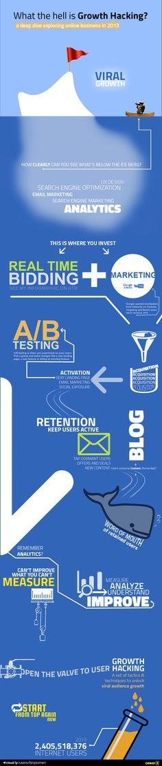 Inmersión el los negocios online en 2013 #infografia #infographic
