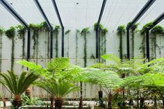 Cable Trellis AGS2 Grid Style - by Ronstan at William McCormack Place, Cairns   Ronstan Product Information Feed