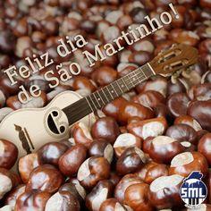 Um feliz dia de São Martinho, com muitas castanhas, água-pé e música, são os votos do Salão Musical de Lisboa. http://www.salaomusical.com/pt/