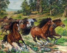 Horse Art, Pony, Wildlife, Cross Stitch, Horses, Deco, Artwork, Painting, Frames