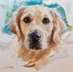 Golden Retriever Portrait, Apollo, oil on canvas by Heather Lenefsky