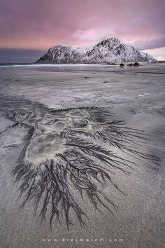 "Skagsanden is my favorite beach in Lofoten, and with good reason. Part of what makes it so interesting are these tree-like patterns. This one was especially large and intricate, and even had several 'springs' bubbling inside it. If you'd like to join me and shoot these amazing locations yourself, check out my '<a href=""http://www.erezmarom.com/index.php/photography-workshops/view/northern-spirits-lofoten-winter-photo-workshop"">Northern Spirits</a>' Lofoten workshop on erezmarom.com and join…"