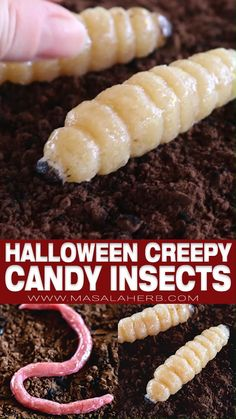 Creepy Halloween Candy Creatures with Marzipan - Halloween party food idea with homemade marzipan almond paste shaped into realistic creepy woodworms, maggots, slugs and earthworms. Deliciously healthy vegan but creepy candy sweets for a real Halloween adult party. Seasonal party sweets and fun food recipes! Halloween recipes, Halloween candy ideas, DIY Halloween treats, Healthy Halloween food, www.MasalaHerb.com