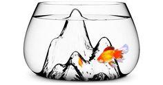 Love this glass terrain fishbowl