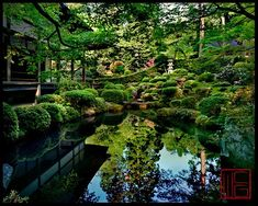 japanese garden, kyoto.