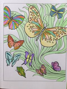 Finished page 1 of Creative Haven Coloring book..