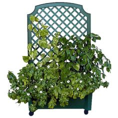 Bring a touch of style to your garden oasis with this eye-catching essential, the perfect design for your favorite plant.   Product: P...