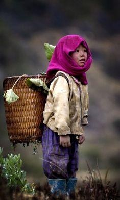 le-haut-tonkin-vietnam
