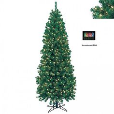 Barcana 7'ft Northern Cypress with Clear Lights -- Click image for more details.