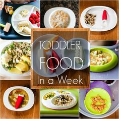 TODDLER FOOD IN A WEEK