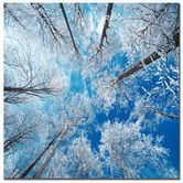"Found it at AllModern - Frozen Sky by Philippe Sainte-Laudy, Canvas Art - 24"" x 24"""