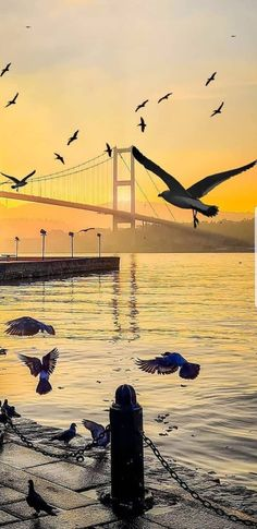 Best Vacation Spots, Best Vacations, Istanbul Turkey, New York Skyline, Wallpaper, Pictures, Photography, Travel, Art