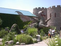 Dragons and castles and ants OH MY!! Albuquerque