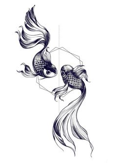 Fishes drawing by Miss Sita @ One O Nine barcelona: