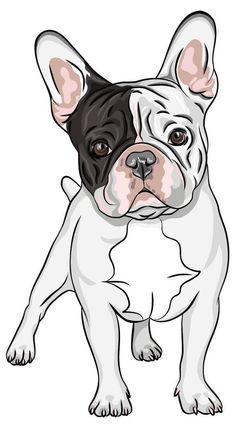 character?cohabit with other animals and children?difference male and female ? ...... French Bulldog Wallpaper, French Bulldog Drawing, Merle French Bulldog, French Bulldog Names, French Bulldog Puppies, French Bulldogs, Tattoo Bulldog, French Bulldog Tattoo, Bulldogge Tattoo